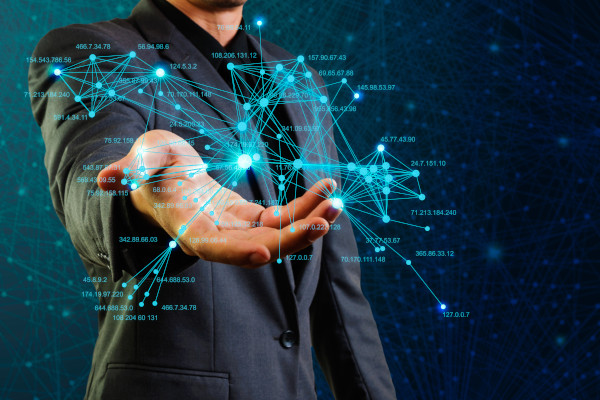 network consultancy